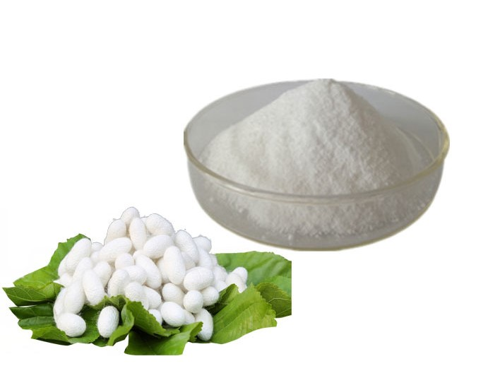 What is difference among Silk Powder, Silk Peptide and Silk Amino Acids?